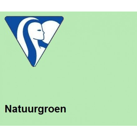 Clairefontaine DIN A4 120gr natuurgroen (250) - FSC Mix credit