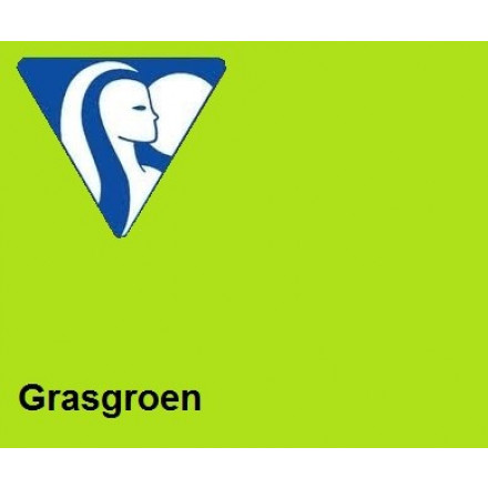 Clairefontaine DIN A4 120gr grasgroen (250) - FSC Mix credit