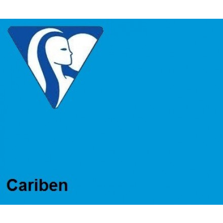 Clairefontaine DIN A4 210gr cariben (250) - FSC Mix credit