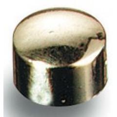Magneet Maped Ø 10mm verguld (8)
