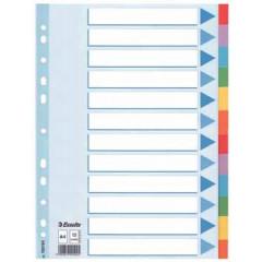 Tabbladen Esselte karton A4 160g 12 tabs 11-gaats assorti