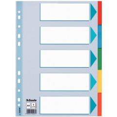 Tabbladen Esselte karton A4 160g 5 tabs 23-gaats assorti
