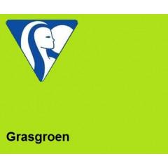 Clairefontaine DIN A4 160gr grasgroen (250) - FSC Mix credit