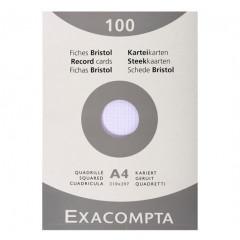 Steekkaart Exacompta 210x297 geruit wit (100)