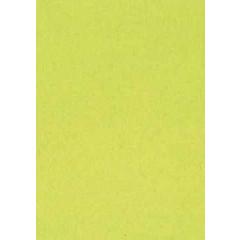 Tekenpapier A4 120gr lichtgroen (500)