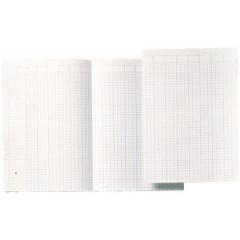 Accountantspapier Atlanta 29,4x20,7cm dubbel gevouwen nederlandstalig (20x5 vel)