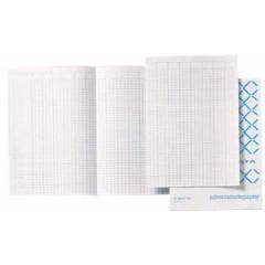 Accountantspapier Atlanta 33x20,5cm dubbel gevouwen nederlandstalig (20x5 vel)