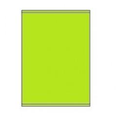 Etiketten Eticopy 01 etik/bl 210x280mm groen (200)