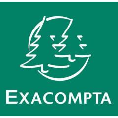 Ontvangen order Exacompta 21x13.5 3-voud NCR