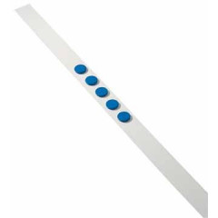 Zelfklevende magneetband Dahle 50mm x 1m wit incl. 5 magneten blauw 32mm