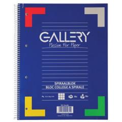 Spiraalschrift Gallery A4 geruit 160blz assorti