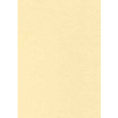 Structuurpapier Decadry A4 165gr champagne (50)